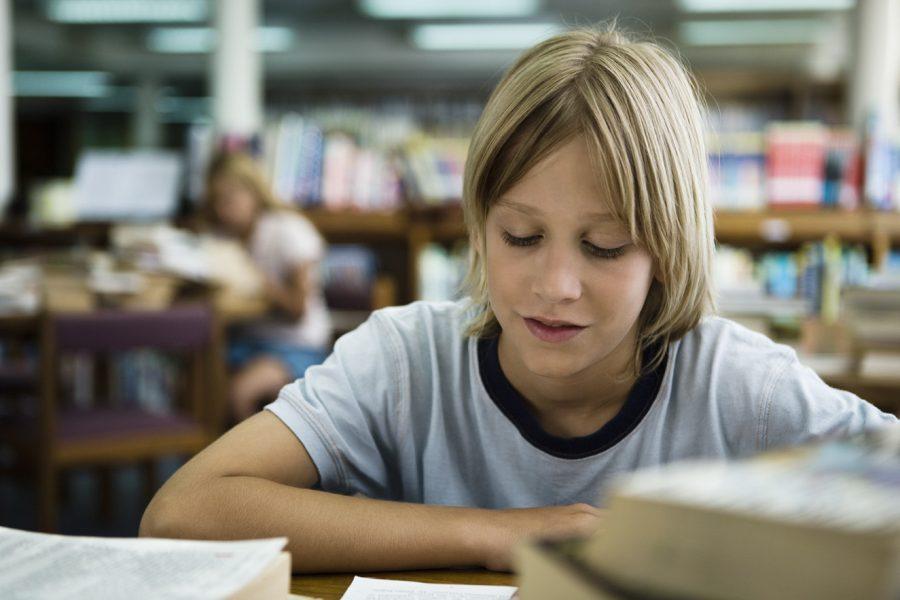 Schüler beim Lesen_Foto: colourbox / Sigrid Olsson