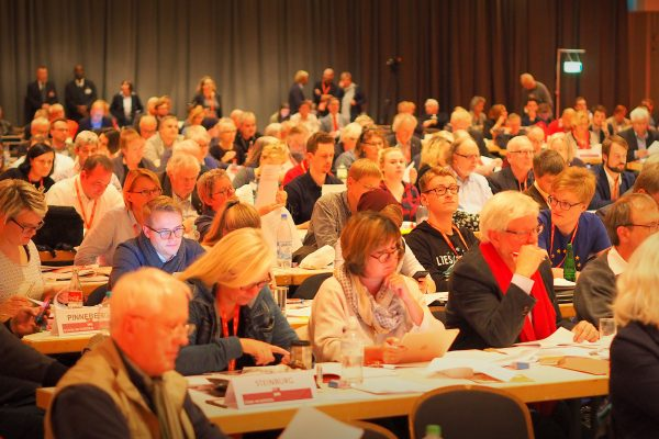 Landesparteitag Plenum