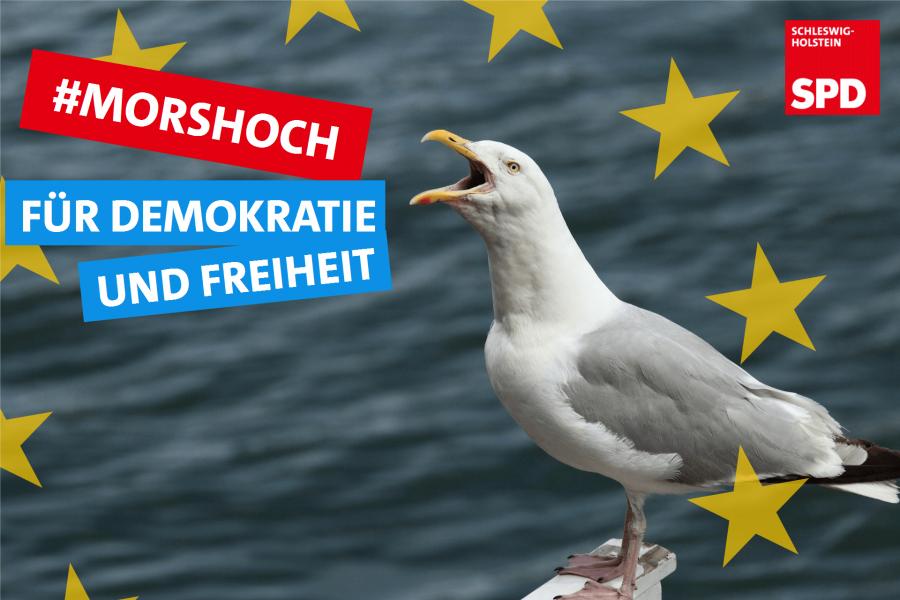 """""""Mors Hoch,"""" sagt die Möwe """"Für Demokratie und Freiheit!"""""""